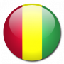 flags:guinea.png